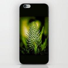 Just green iPhone & iPod Skin