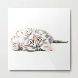 Cute Maine Coon Kitten Playing Metal Print