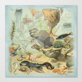 SEA CREATURES COLLAGE, OCEAN ILLUSTRATION Canvas Print