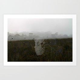 Dew Web Art Print