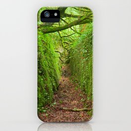 Ancient Emerald Forest Trail iPhone Case