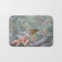 A Townsend's Warbler Spruces Up Bath Mat