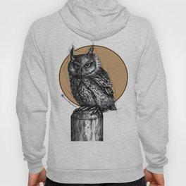 Owl sun Hoody