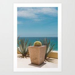 Cabo Cactus Art Print