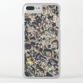 salish sea Clear iPhone Case