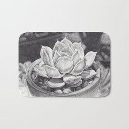 Echeveria lilacina Bath Mat