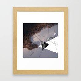 sublimis Framed Art Print