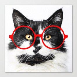 Rocko, cat wearing glasses Canvas Print