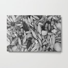 Bird Seeds Pattern Photograph Monochrome Metal Print