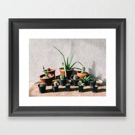 Cacti Love Framed Art Print