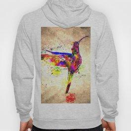 Hummingbird Grunge Hoody