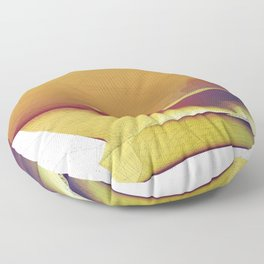 Curvature & Nodes Floor Pillow