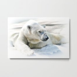 Just Chilling Metal Print