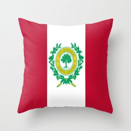 Flag of Raleigh Throw Pillow