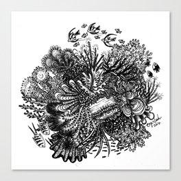 Coral Circle Canvas Print