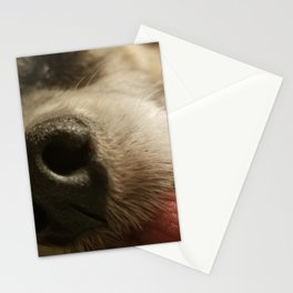 By a Nose Stationery Cards