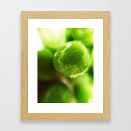 Green Pea Framed Art Print