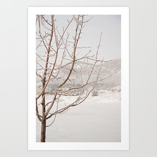 a long winter Art Print