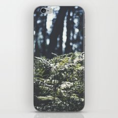 where the trees still whisper iPhone & iPod Skin