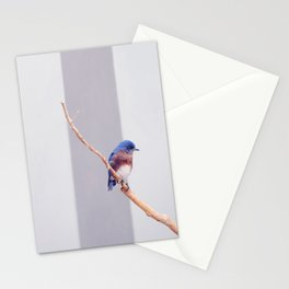 Western Bluebird Stationery Cards