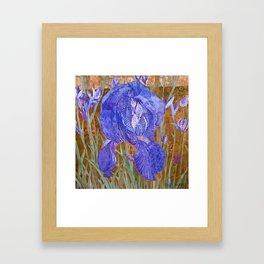 Dottie Blue Iris Collage Framed Art Print