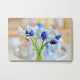 Blue and white spring lily Metal Print