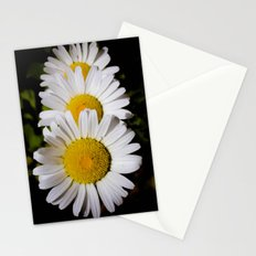 Daisy Cascade Stationery Cards