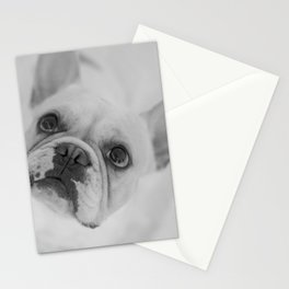 My best friend¡ Stationery Cards