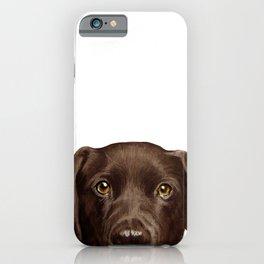 Labrador Chocolate original illustration by miart iPhone Case
