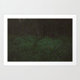 Unenlightened Art Print