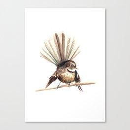Piwakawaka / Fantail - a native New Zealand bird 2011 Canvas Print