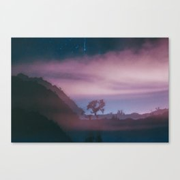 dreamy Joshua Tree at night Canvas Print