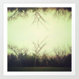 Green trees.  Art Print