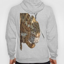 Chameleon Hanging On A Wire Fence Vector Hoody