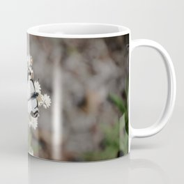 White Pine Butterfly Coffee Mug