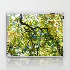 Arboretum Tree Laptop & iPad Skin