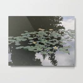 Nymphaeas 2 Metal Print