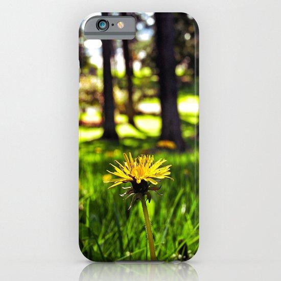 Park dandelion iPhone & iPod Case