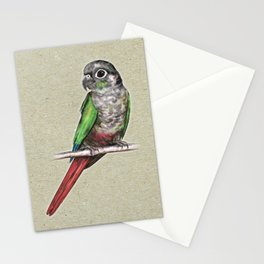 Green-cheeked conure Stationery Cards