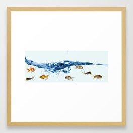 Keep swiming Framed Art Print