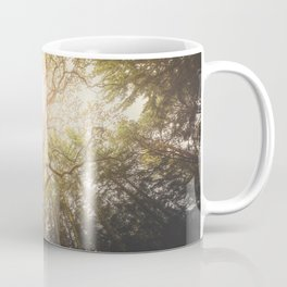 I found a tree in the forest Coffee Mug