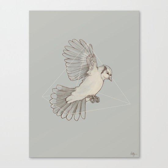 Dynamics of Flight Canvas Print