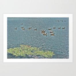 A Day on Bass Lake Art Print