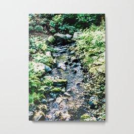 Alaskan Forest #2 Metal Print