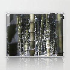 Kyoto Winter 2015 II (bamboo)  Laptop & iPad Skin