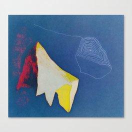 001: ACME Canvas Print