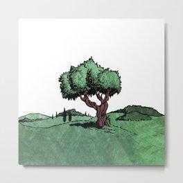Mediterranean Olive Tree Metal Print