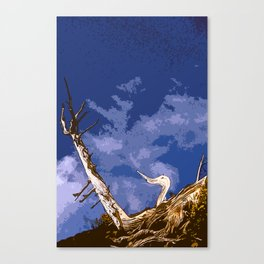 Just Ducky Canvas Print
