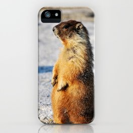 Marmot Belly iPhone Case