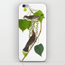 Tyrant Fly-catcher Bird iPhone Skin